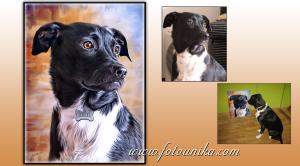 oleo, oleos, oleografia, oleografias, mascota, mascotas, perro, perra, perrito, perrita, perritos, perritas, gato, gata, gatos, gatas, animal domestico, animales domesticos, homenaje mascota, homenajes mascotas, homenaje perro, homenajes perros, homenaje perrita, homenajes perritas, regalo, regalos, regalo emotivo, regalos emotivos, cuadro personalizado, cuadros personalizados