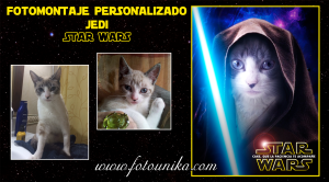 star wars, star wars episodio 7, la guerra de las galaxias, el despertar de la fuerza, fotomontaje, montaje, cuadro personalizado, sorpresa, regalo, cuadro, lamina, ideas para regalar, homenaje, original, gato, gata, animal de compañia, mascota