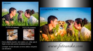 fotomontaje, fotomanipulacion, arte digital, cuadro, cuadro personalizado, lamina, regalo, el regalo, regalo de bodas, mascota, perro, recuerdo, homenaje, dog, novios, original, unico, personalizado, emotivo