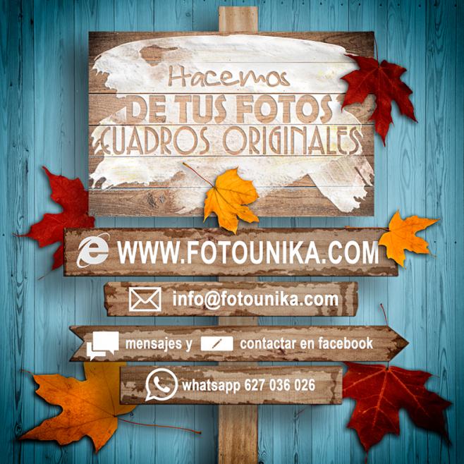 otoño, autumn, estacion del año, estacion de otoño, hojas, arboles, tonos, colores, castañas, cuadros, cuadros personalizados, laminas, regalo, el regalo, original, unico, diferente, arte digital